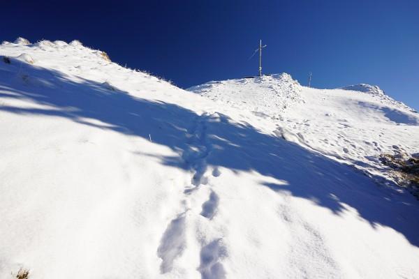 Das Kochofen-Gipfelplateau oberhalb der Waldgrenze