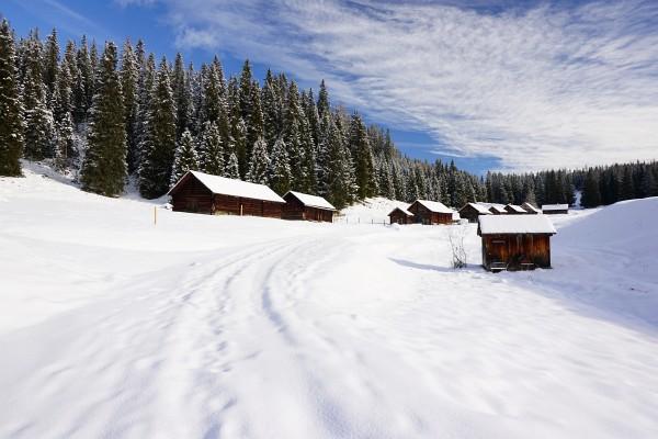 Viehbergalm - Verglichen mit anderen Wintern noch sehr wenig Schnee