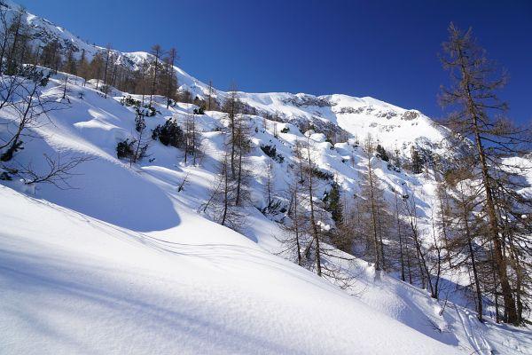 Heute gab es ausreichend Schnee am Weg von der Stubhöhe ins Schneekar.