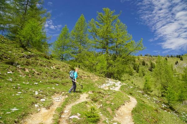 Am Weg von der Wiesleralm auf das Wieslerhorn