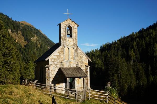 Vor der Rückkehr zur Kapelle bei der Muritzenalm machten wir noch einen kurzen Abstecher zum Naturdenkmal Kandelaberfichte