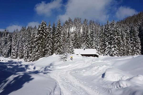Mitte Jänner 2017 gibt es bei der Rahnstube genügend Schnee für Schitouren zum Hirzberg (nach links) oder zum Hochmühleck (nach rechts).