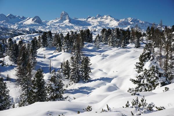 Jedes Mal wieder ein Höhepunkt der Hirzberg-Tour - der Ausblick zu den höchsten Dachstein-Gipfeln