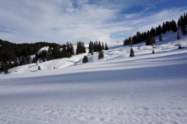 Winterlandschaft am Bürserberg in Vorarlberg