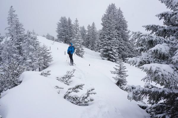 Am Klamperschrofen - AlpenYetin: Ist das ein Gipfel? (Denn dann ist da obligatorische Gipfel-Busserl Pflicht ;-) )