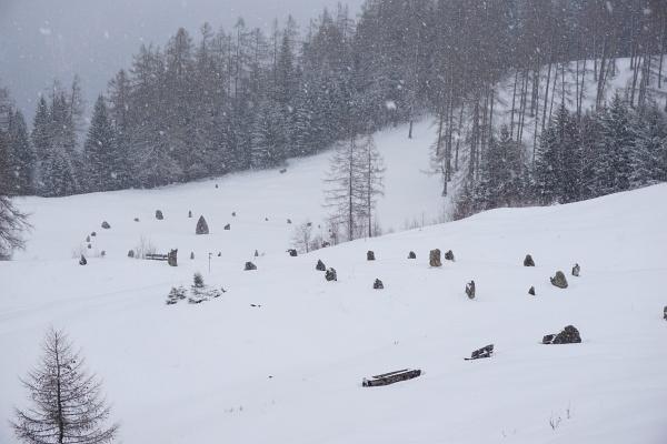 Die Steinkreise am Bürserberg