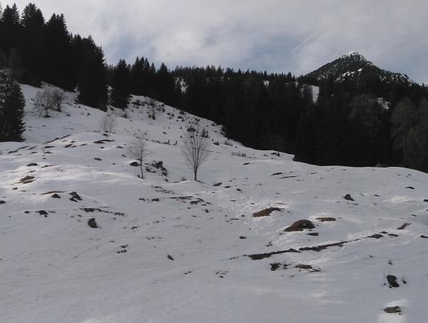 Husky-Toni und AlpenYeti links der Bildmitte