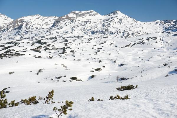 Einsame Schiwanderung über das Hochplateau des Toten Gebirges. Hinten rechts unser Gipfelziel - der Grießkogel. Rechts unterhalb der Bildmitte 2 Skitourengeher am Weg zum Wildensee.