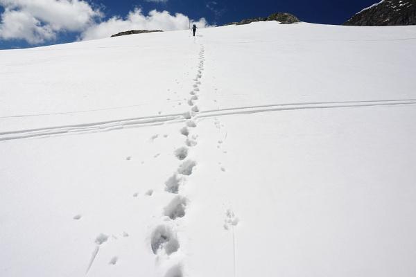 Von den Skitouren mit wenig Schnee zu den Wandertouren mit viel Schnee