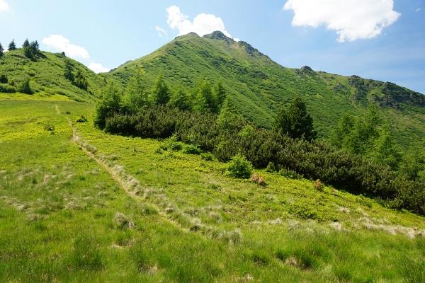 Der geplante Steig um die Ostseite des Almspitz war leider von tiefen Wassergräben versperrt
