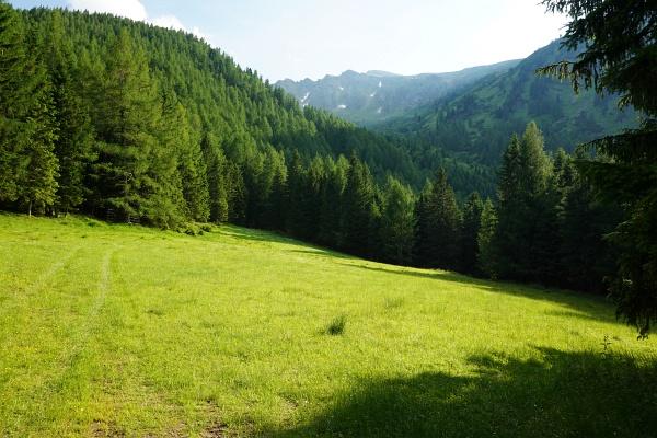 Durch den Steilwald kommen wir nicht durch. Also noch einmal 400 Höhenmeter auf den Höhenzug rechts der Bildmitte hinauf.