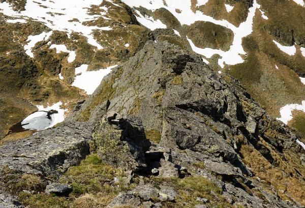 Gelegentlich ein Stoamandl am Nordgrat hinab in den Sattel zwischen Schöderkogel und Sauofen