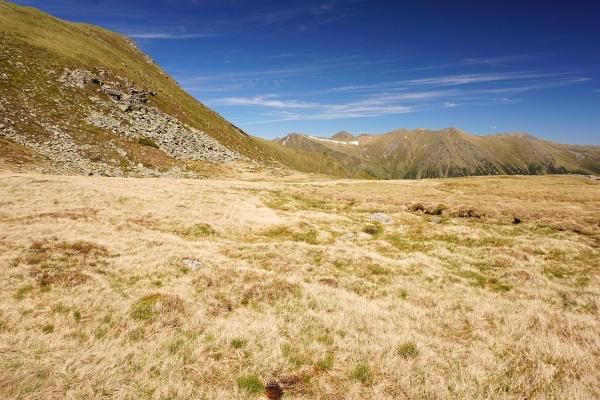 Auf weichen, vollgesogenen Sumpfwiesen zu einem Almweg