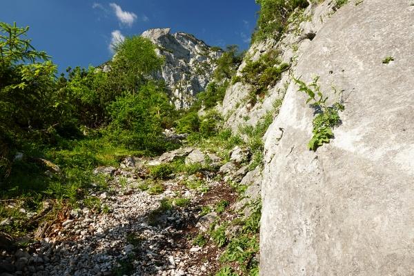 Im unteren Abschnitt am Lärchkogelsteig: Wer aufmerksam ist, findet immer wieder rote Farbtupfer, Steinmandln und leichte Steigspuren