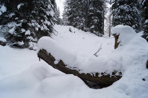 In größeren Höhen oberhalb von 1.600 Meter Seehöhe gibt es bereits nennenswerte Schneemengen.