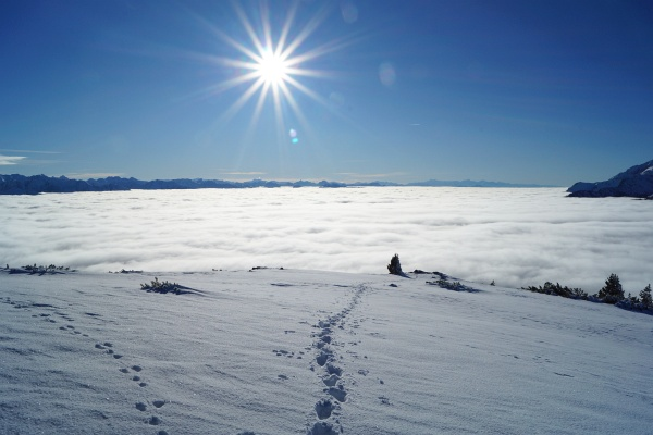 Abstieg zurück in den Nebel