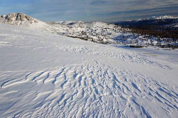 Oberhalb der Waldgrenze war der windgepresste Schnee leichter zu begehen.
