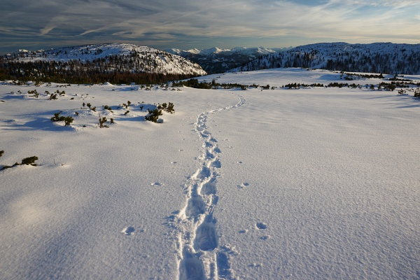 Einsame Spur im Toten Gebirge zwischen Liezener Hütte und Kleinmölbing