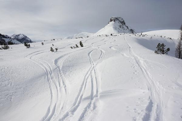Nach 300 steilen Aufstiegshöhenmetern erreicht man ein weites Plateau. Rechts das felsige Spazek - in Bildmitte hinten der Schneegipfel des Spirzinger.