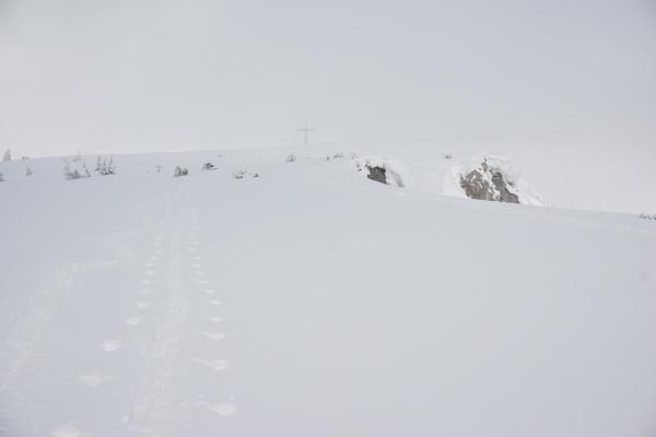 Die Sicht am Ausseer Zinken hätte besser sein können (hier kurz vor dem Gipfelkreuz) ...