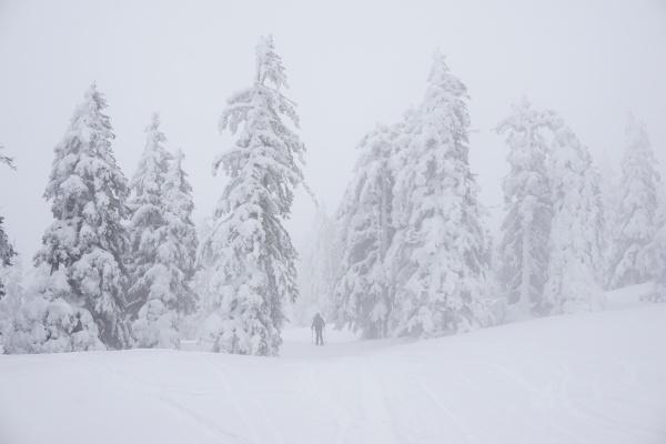 Schlechte Sicht, aber idyllische Winterlandschaft beim Aufstieg auf das Kampl