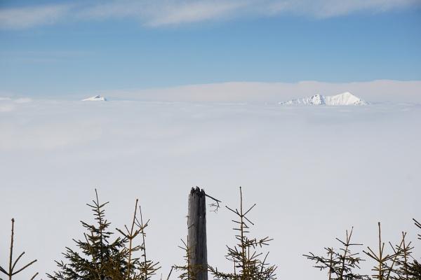 Nur kurz war es mir heute vergönnt, den sonnigen Ausblick über den feucht-kalten Nebel zu genießen