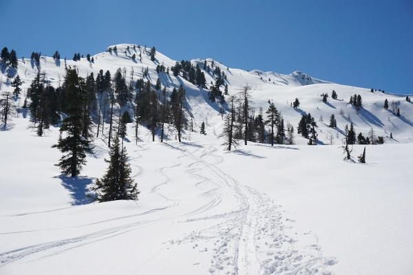 Die nordseitig ausgerichteten, mäßig steilen Hänge auf die Wolfnalmspitze bieten häufig Pulververgnügen