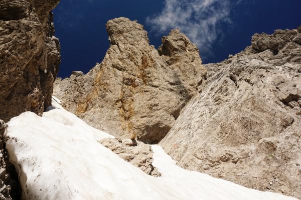 Links über den guten Stapfschnee hinauf und oberhalb des aus dem Schnee ragenden Felsen nach rechts hinüber.