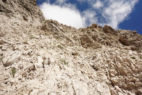 Brüchig, aber meist gut mit Drahtsteilen gesichert geht es die letzten etwa 80 Höhenmeter auf den Spitzkofel