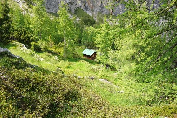 Abstieg vorbei an einer kleinen Jagdhütte in einem idyllischen Lärchenwäldchen