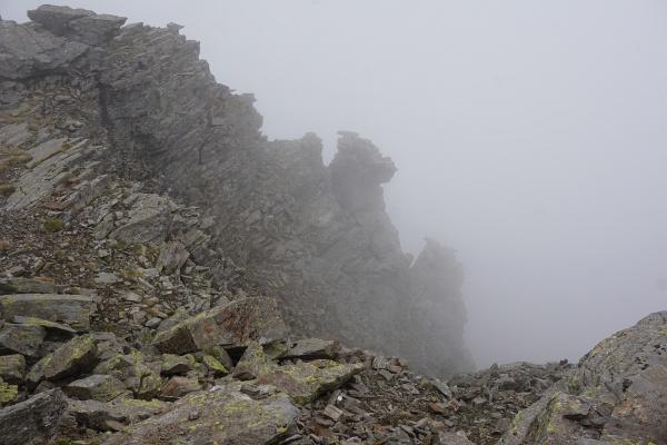 Viel Ausblick war uns am Gipfel der Schleinitz nicht gegönnt.