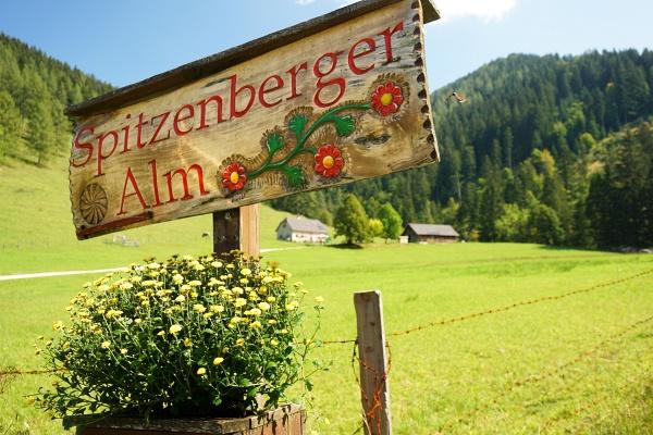 Spitzenberger Alm am Ende unserer Tour
