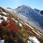 Während Ingrid mit ihren stabilen, hohen Bergschuhen dem schneebedeckten Sommerweg auf den Tennkogel folgte, versuchte ich beim Hüpfen von Grasbüschel zu Grasbüschel halbwegs trockene Füße zu behalten.