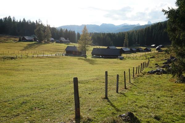 Bei der ersten Wanderung habe ich auch noch die Viehbergalm angehängt.
