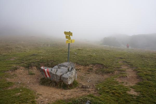 Feuchter Nebel in den Täleren machte den Start nicht gerade angenehm.