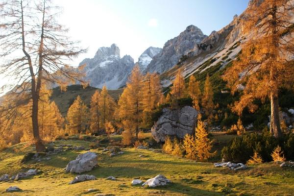 Herbststimmung am Rinderfeld