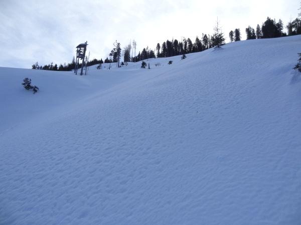 Aufstieg über den großen Schlag nördlich der Brünnerhütte.