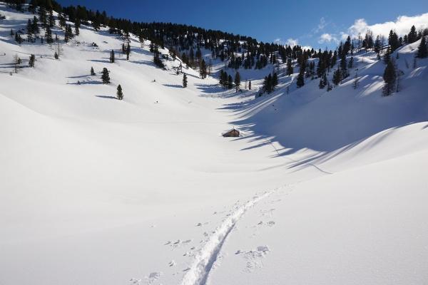 Bei der Königreichalm kommt im Hintergrund links oberhalb der Bildmitte ein Skitourengeher vom Hirzberg herunter