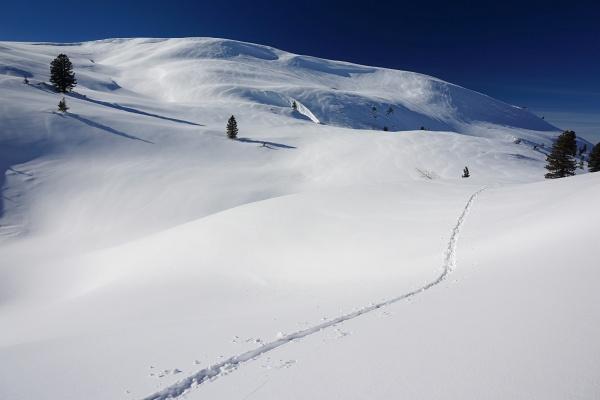 Einsame Spur im Kemetgebirge