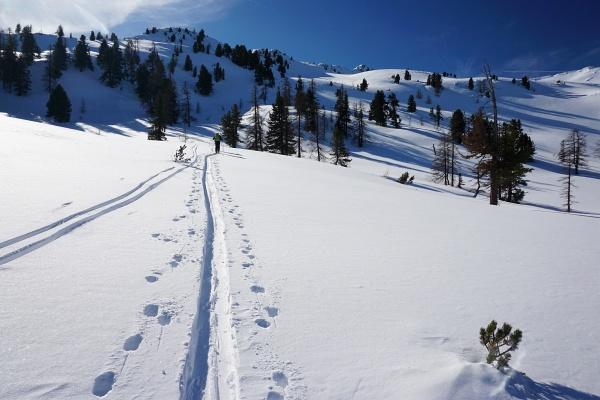 Am Weg zur Wolfnalmspitze