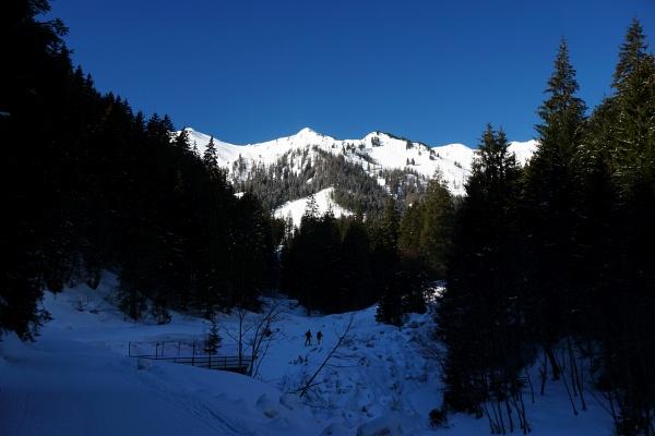 Auf der Rodelbahn zur Mörsbachhütte