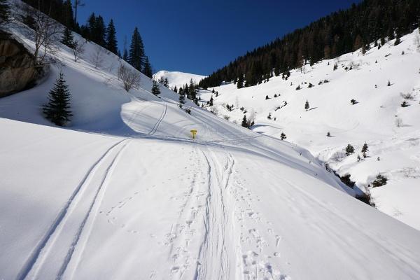 Vom Schranken ins Almgelände. Auf der nordseitigen Straße liegt noch genügend Schnee für eine Abfahrt bis zum Auto.