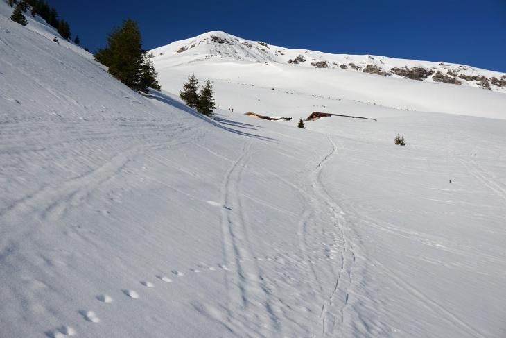Oberhalb der Baumgrenze zur Gadauner Hochalm. Links der Hütten erkennt man 2 Skitourengeher, die heute den ganzen Anstieg über vor mir gehen sollten.