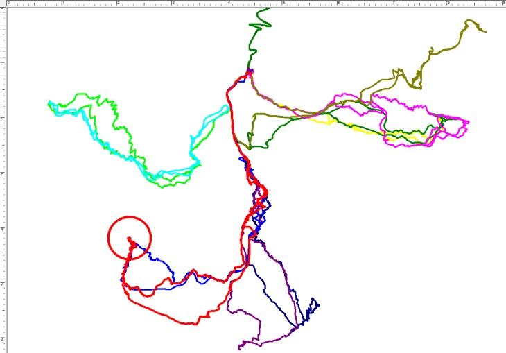 Bisherige Skitouren mit Ausgangspunkt in Kolm-Saigurn. Rot ist die aktuelle Skitour auf den Hohen Sonnblick (blau die Route von 2006).