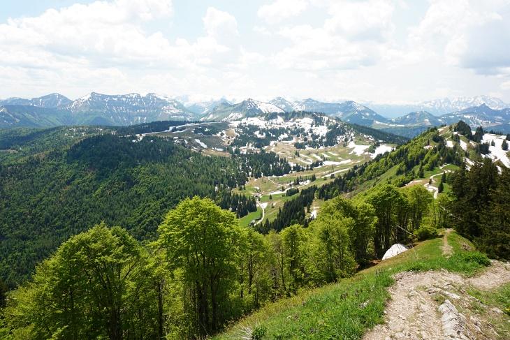 Der erste Abschnitt unserer Wanderroute im Überblick. Etwa in Bildmitte die Illingerbergalm. Links hinauf zum Spitzeck. Rechts der Illingerberg.