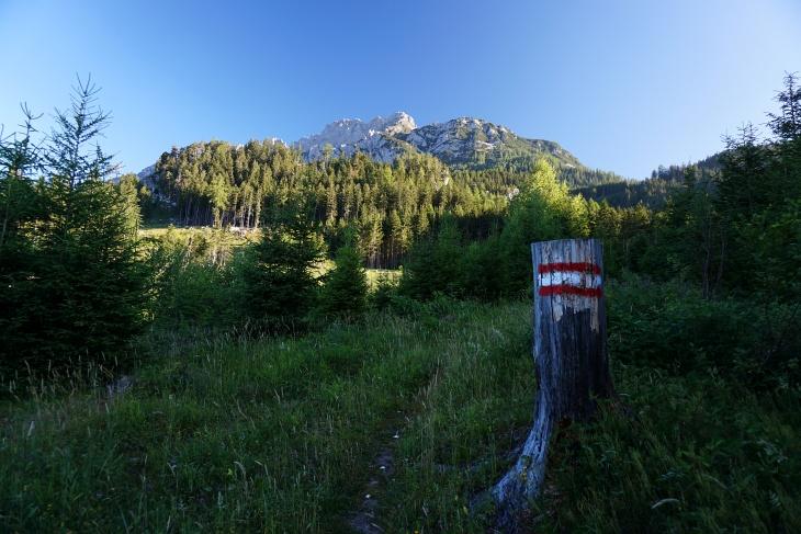 Vom Sender in Gröbming-Hofmanning am Direktanstieg zum Kammspitz. Noch sind es mehr als 1.200 Höhenmeter bis zum Gipfelkreuz.