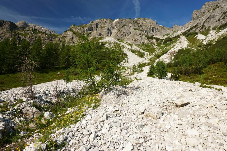 Das Steiglein leitet teilweise über Steinschuttfelder.
