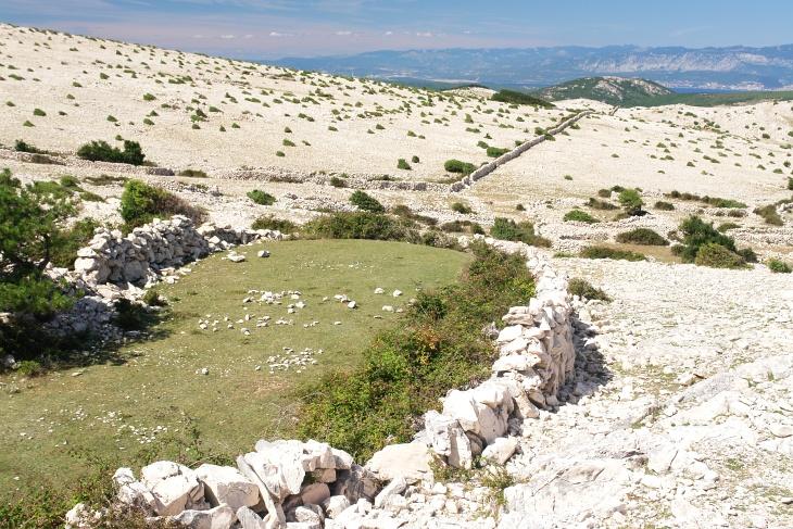 ... zu auffällig kurzgeschorenen Grünflächen, die ohne Steine mit etwas Phantasie auch als Golf Green durchgehen könnten.