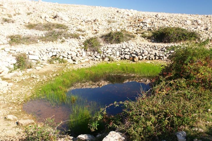 Wasserstellen sind sehr selten und wirken beinahe unwirklich im Karstgebiet.