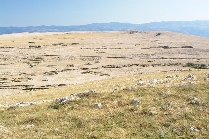 Das Mondplateau ist geprägt von trockenen Gräsern in karger, steiniger Wildnis.